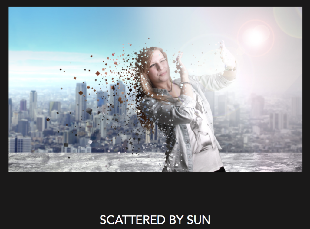 Scattered by Sun (Dominique Gessner, 2015)